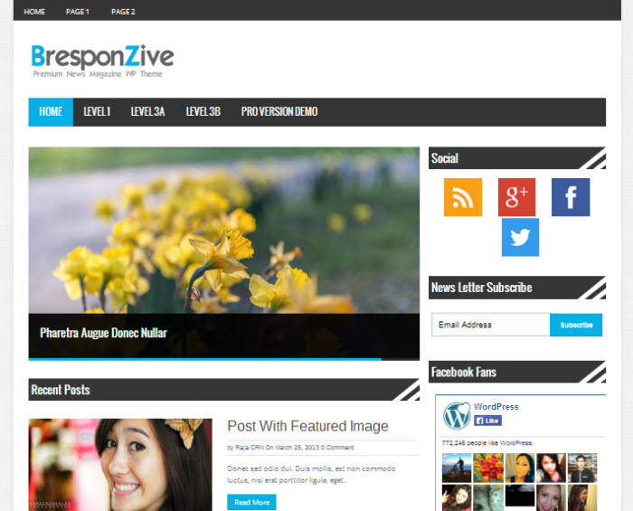 Bresponzive WordPress Theme Free Download