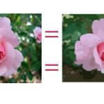 Convert a JPEG/GIF/PNG/Bitmap Image into a Vector Image