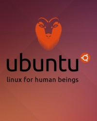 How To Find Out Linux Ubuntu OS Version Installed on Your PC?