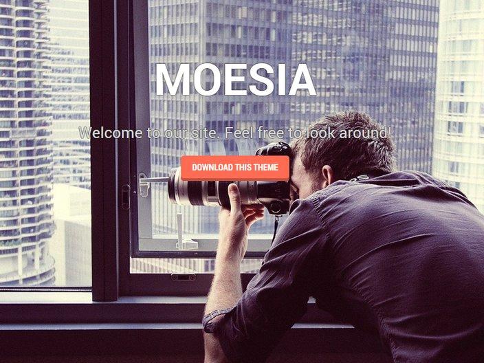 moesia-wp-theme