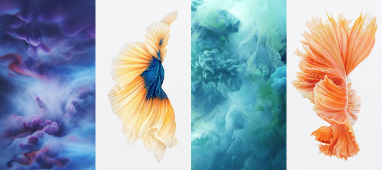 Download IPhone 6s Official Live Photos Dynamic Wallpapers