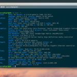 Terminal Commands To Check CPU Information On Linux