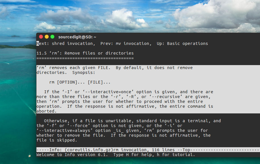 rm Command in Linux With Examples – Delete a File in Linux